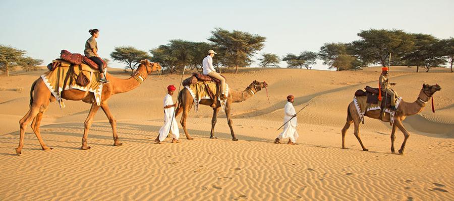 desert-sundowner-07